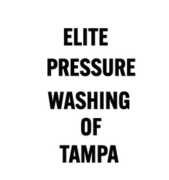 Elite Pressure Washing of Tampa - Tampa, FL, USA