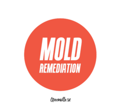 Mold Remediation Greenville SC - Greenville, SC, USA
