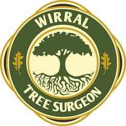 Wirral Tree Surgeon - Birkenhead, Merseyside, United Kingdom